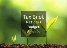 Tax Brief: National Budget Speech